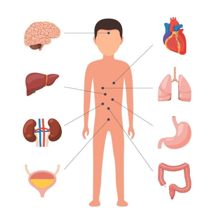 meddi- blog sobre médico internista 5