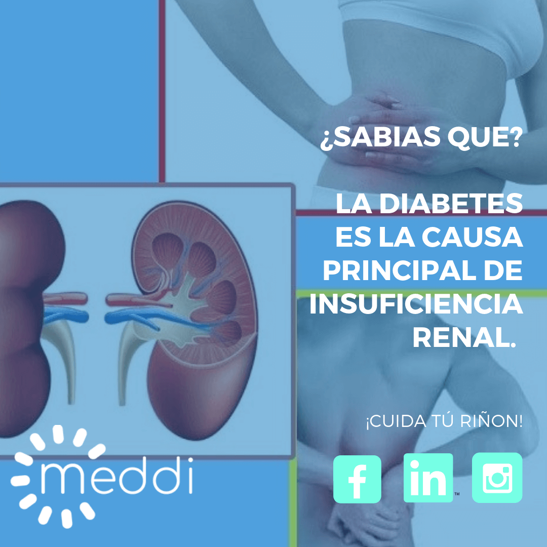 meddi- causas de insuficiencia renal