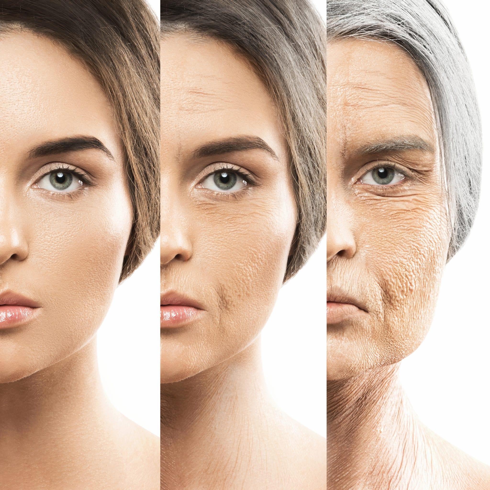 meddi- salud inteligente- menopausia y climaterio blog