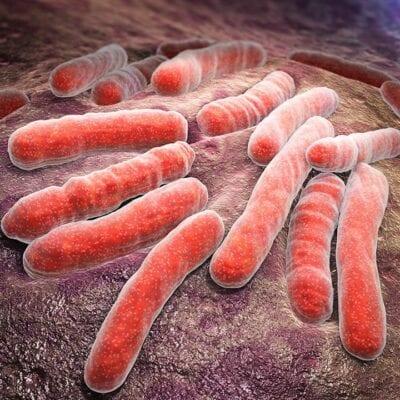 Infectología – Centro Dime